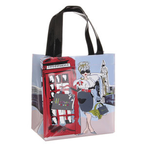 Two Sizes Waterproof Zipper Pocket PVC Shopping Bag (H008) pictures & photos