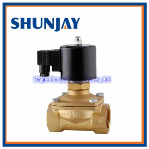 Model 2W160-15 Brass Material 1/2 Inch Water Solenoid Valve 220V AC
