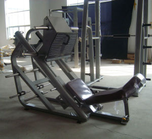 Ce Approved Nautilus Fitness Machine / Seated DIP (SW-2007) pictures & photos