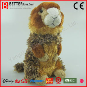 En71 Realistic Stuffed Animal Soft Marmot Plush Toy for Kids pictures & photos