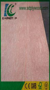 Bintangor Plywood Bb/Bb Grade for Dubai Market pictures & photos