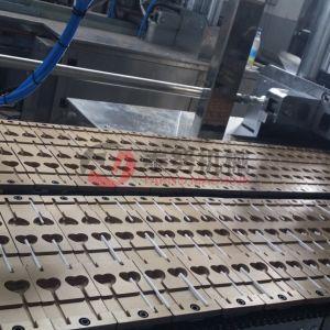 Automatic Shaped Lollipop Production Line pictures & photos