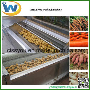 China Industrial Brush Type Root Vegetable Washing Peeling Machine pictures & photos