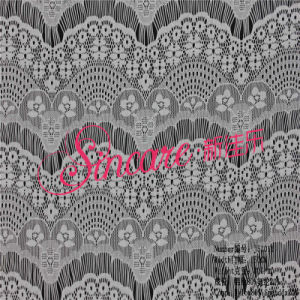 Newest Nylon & Spandex Lace Fabric for Dress pictures & photos