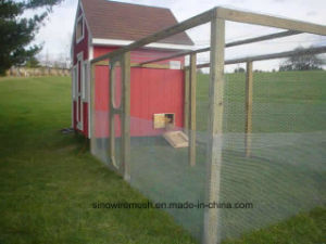Sailin Chicken Wire Mesh Fence pictures & photos