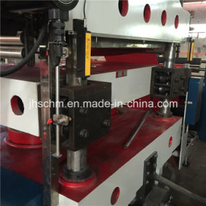 Carpet/Mat/Rubber Hydraulic Heat Press Machine pictures & photos