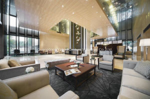 Yabo Hotel Modern Lobby Furniture pictures & photos