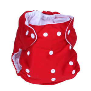 Aio Reusable Diaper (OEM) pictures & photos