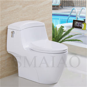 Sanitary Wares Bathroom Single Flush One-Piece Siphonic Ceramic Toilet (8110) pictures & photos