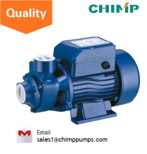 China Chimp Mini Water Pump 0.5HP Water Pump (QB60) pictures & photos