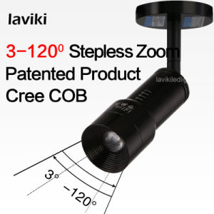 Adjustable Beam Angle CREE COB LED Spot Light with Zoom pictures & photos