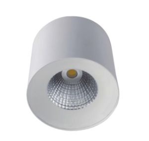 13W COB LED Ceiling Light pictures & photos