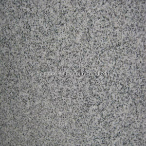 Natural Stone Granite New G603 Grey Slabs for Tiles and Countertops pictures & photos