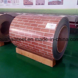 Competitive Price Flower Coated Steel Coil for Building Decoration pictures & photos
