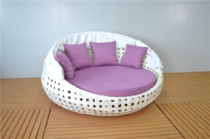 Outdoor Rattan Big Round Chaise Lounge Sofa with Canopy pictures & photos