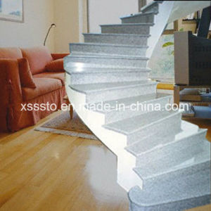 Polished Light Grey Granite G603 Stairs pictures & photos
