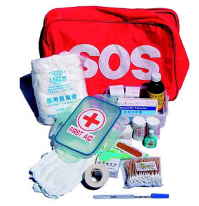 First Aid Kit/Mini First Aid Kit/Car First Aid Kit pictures & photos