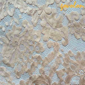 Elastic Nylon Crochet Lace Fabric (SGS Approved) pictures & photos