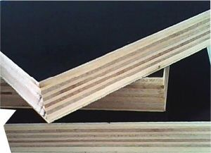 Film Faced Combi Birch-Hardwoods Plywood for Construction pictures & photos