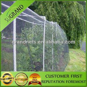 Anit Bird Net to Australia pictures & photos