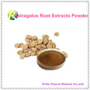 High Quality Astragalus Root Extracts Powder pictures & photos