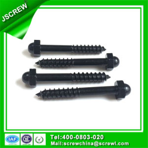 Customized Made Black Screw Bolt pictures & photos