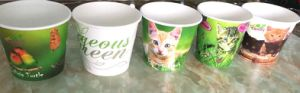 2016 Popular Custom Logo Design New Products Paper Pots/Bowls for Flower pictures & photos