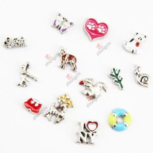Mixed Design Floating Charms for Window Lockets (FC) pictures & photos