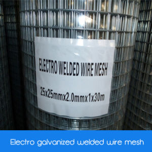 Electro Galvanized Coated Welded Wire Mesh/ Electro Zinc Coated Welded Wire Mesh pictures & photos