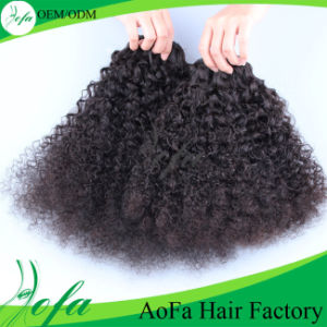 Super Afro Kinky/Human Hair Weft pictures & photos