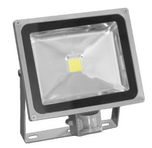 30W PIR Sensor LED Flood Light pictures & photos