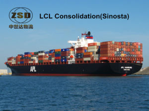 Sea Freight From Shenzhen/Shanghai to Dominica