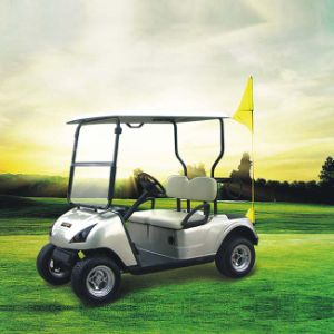 Electric Personal Golf Cart with CE Certificate Dg-C2 (China) pictures & photos