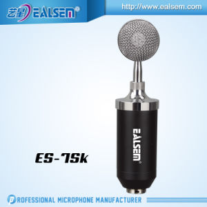 Professional Total Set for Recording and Studio Condender Microphone pictures & photos