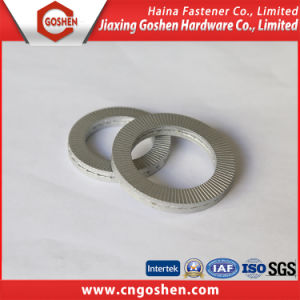 Stainless Steel Double -Stacked Anti-Washer Nord-Lock Washer pictures & photos