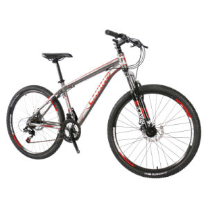 Simple Suspension Mountain Bicycle pictures & photos