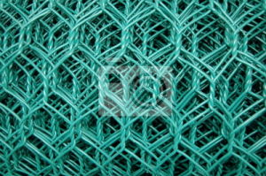 Hot Dipped Galvanized Chicken Wire Mesh for Bird, Farm pictures & photos