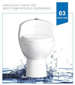Weidansi Ceramic Siphonic S-Trap One Piece Toilet (WDS-T6120) pictures & photos