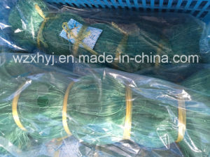 High Quality Green Nylon Monofilament Fishing Net pictures & photos