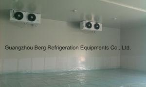 High Quality Copeland Compressor Walk in Freezer & Refrigerator pictures & photos