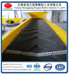 Chevron Conveyor Belt/ Patterned Conveyor Belt pictures & photos