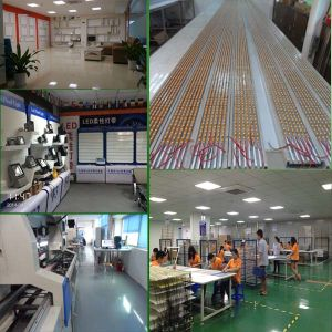SMD 3528 Bi-Color Dimmable LED Strip Light pictures & photos