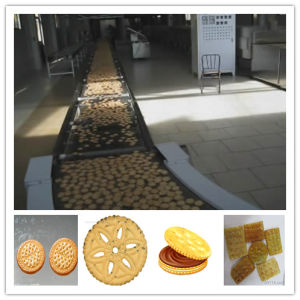Automatic Hard and Soft Biscuit Making Machine, Cookie Production Line pictures & photos