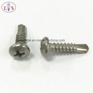 Ss304 Pan Head Phillips Recess Self Drilling Screw pictures & photos