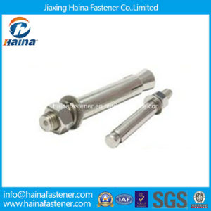 Stainless Steel Anchor Bolts with Hex Nuts pictures & photos