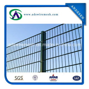 868 Twin Wire Fencing pictures & photos