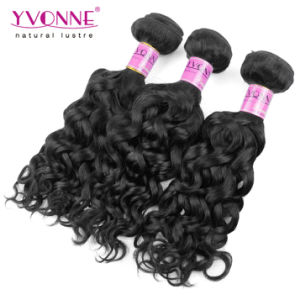 Brazilian Curly Virgin Hair with Lace Closure pictures & photos