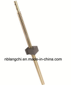 Set Copper Trapezoidal Thread Lead Screw with POM Nut for Machinery pictures & photos