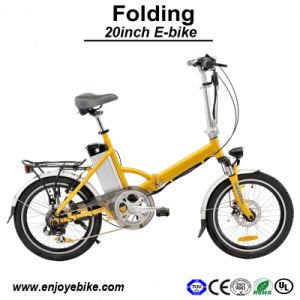 250W Electric Bicycle 8fun Motor E-Bikes E-Bicycle (PE-TDN04Z)