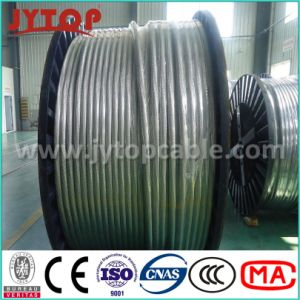 All Aluminum Conductor AAC to ASTM B231 pictures & photos
